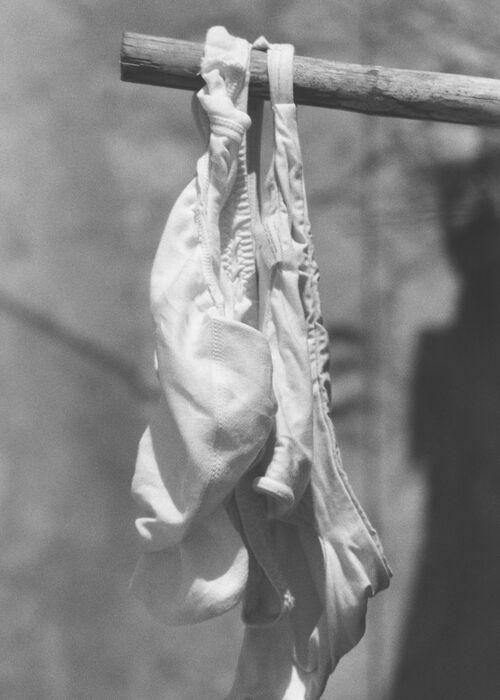 'White Cotton Panty'