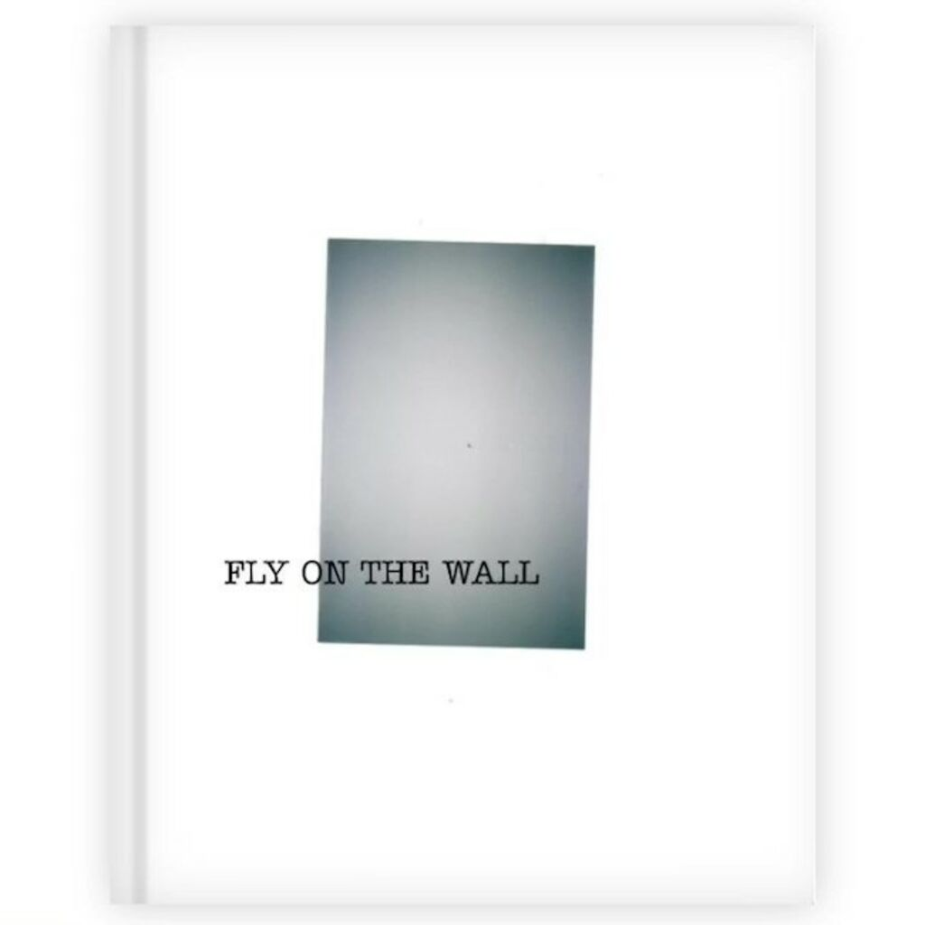 Fly on the Wall - Zine