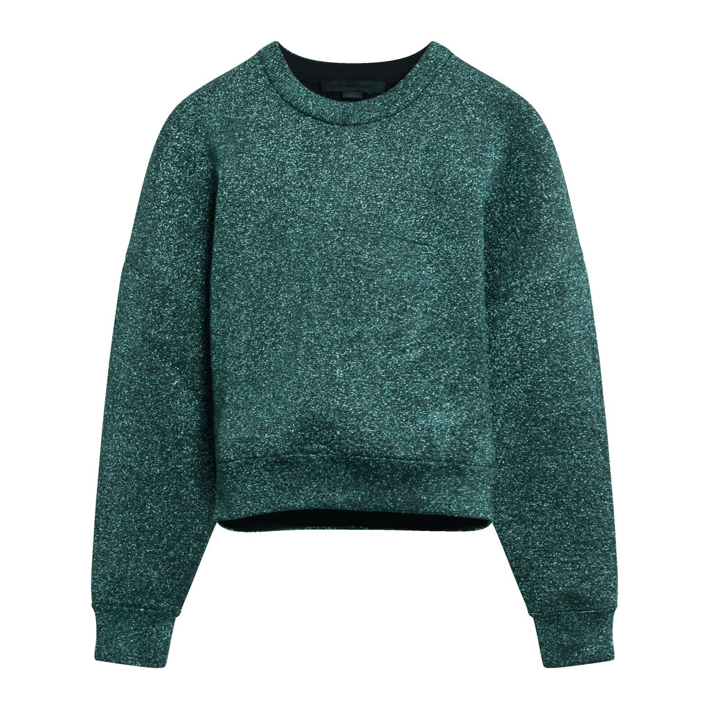Alexander Wang Sparkle Knit Cropped Sweater