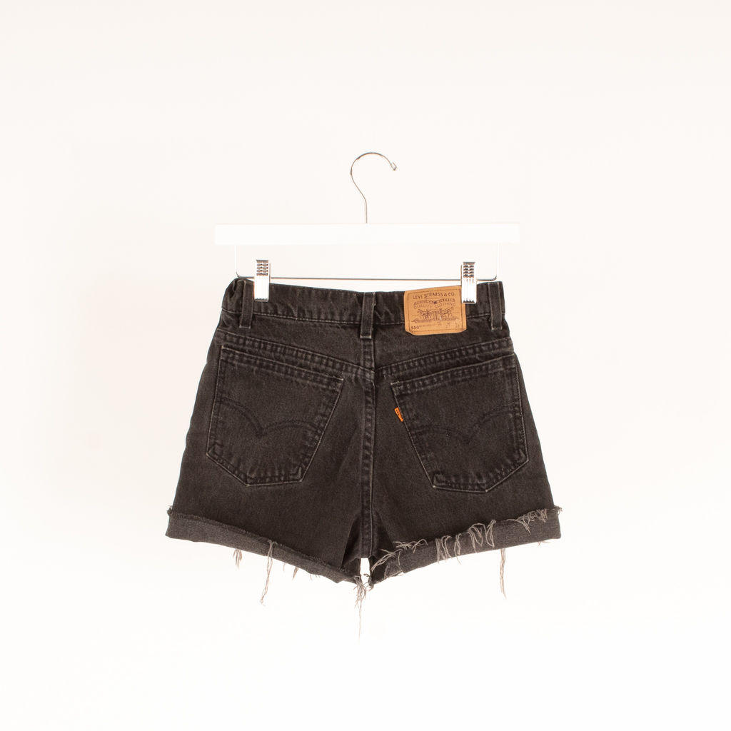 The Vintage Twin Cutoff Jean Shorts